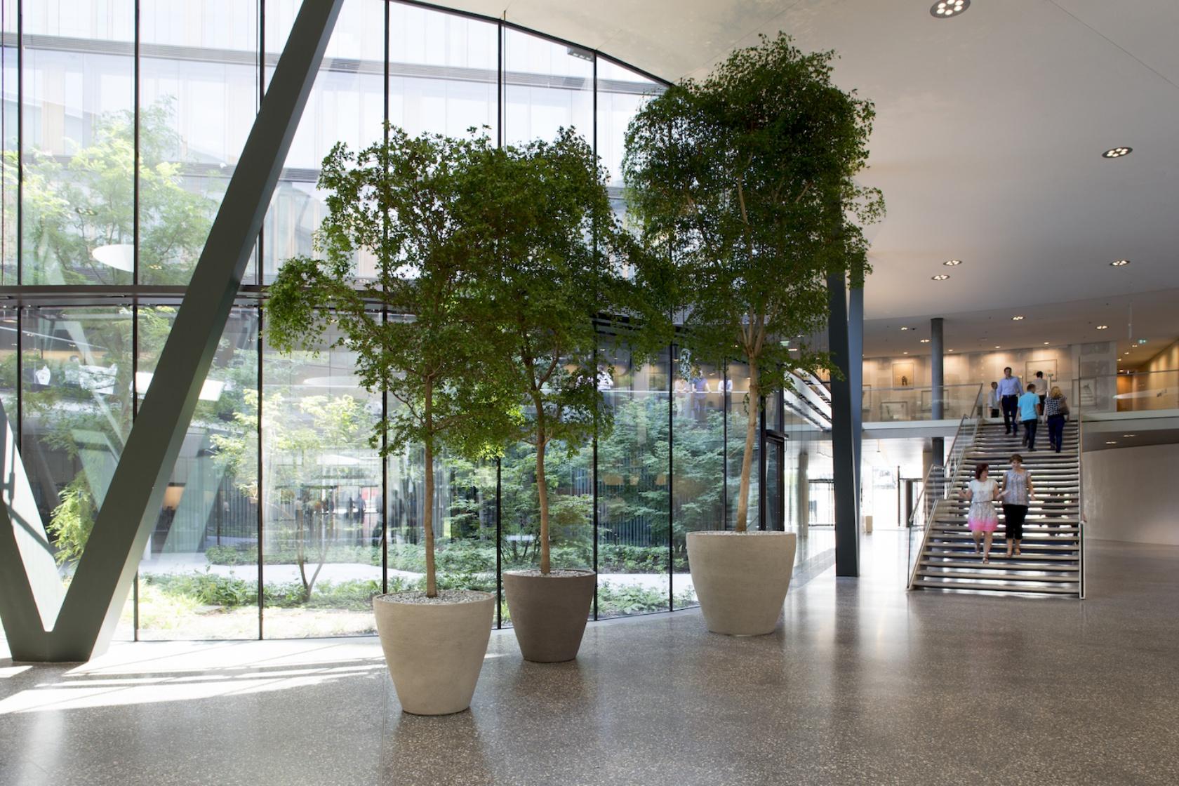 Campus Erste Group Bank Wien