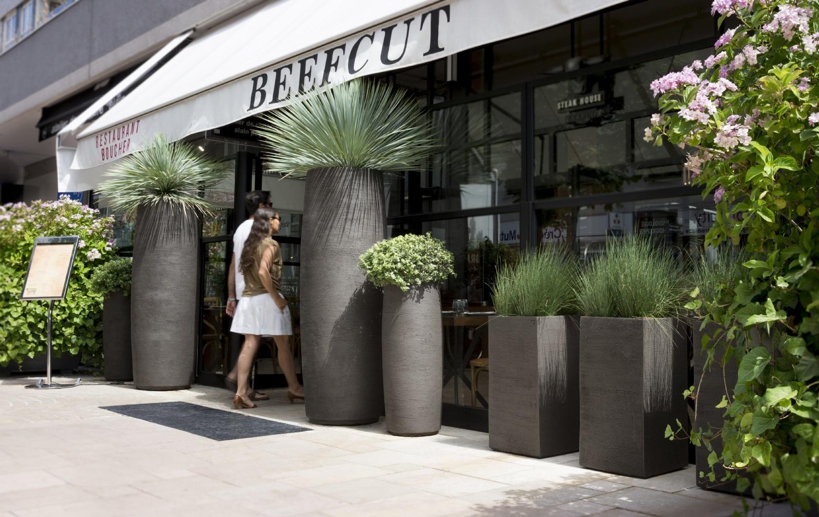 Beefcut